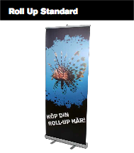 SF-Roll Up Standard