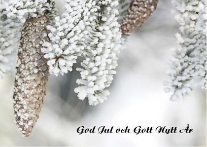 stort-Julkort 022