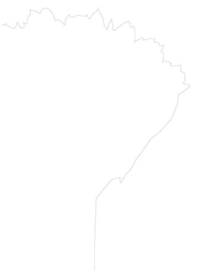Stans-288-72489-tulpankungen